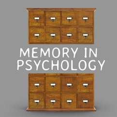 Memory In Psychology