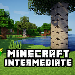 Minecraft Intermediate