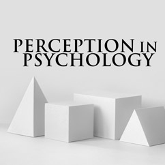 Perception in Psychology