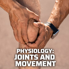 Physiology: Joints and Movement