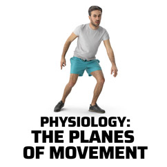 Physiology: The Planes of Movement