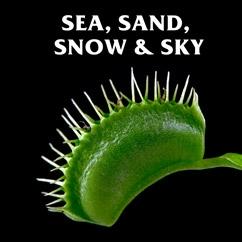Sea, Sand, Snow & Sky