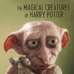 The Magical Creatures of Harry Potter